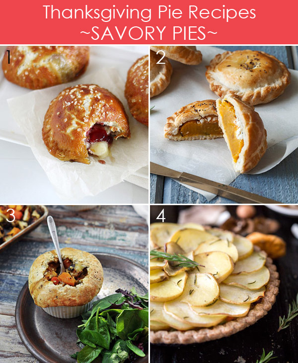 Thanksgiving Savory Pie Recipes plus 25 more delicious pies for Thanksgiving