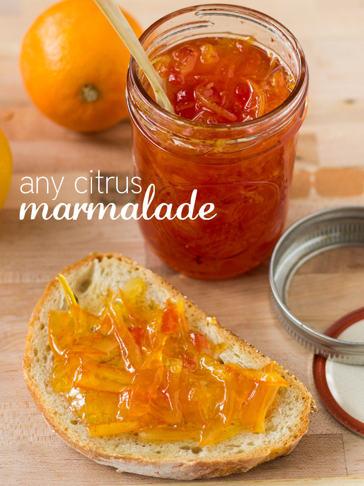 DIY Any Citrus Winter Marmalade