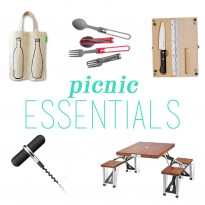 What to Pack for the Perfect Picnic